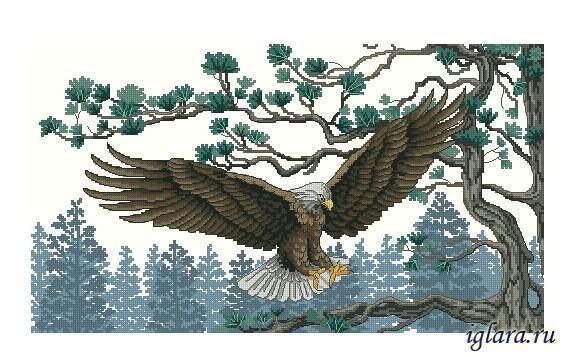 Величественный орел