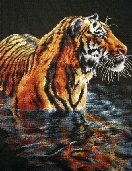 Купающийся тигр (Tiger