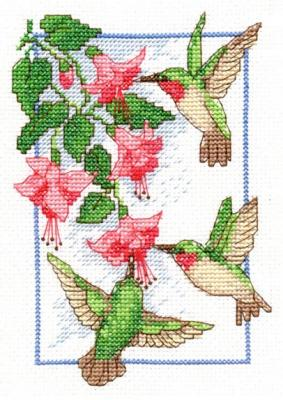 06642/Колибри и фуксии (Hummingbird and Fuchsias)
