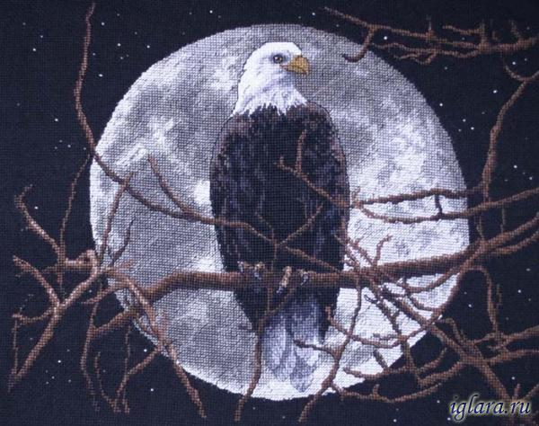 13688/Орел в лунном свете (Eagle in Moonlight)