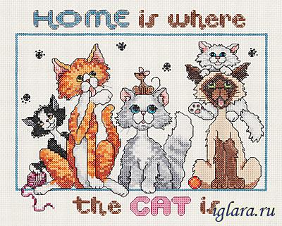 023-0575/Дом там, где коты (Home Is Where the Cat Is)