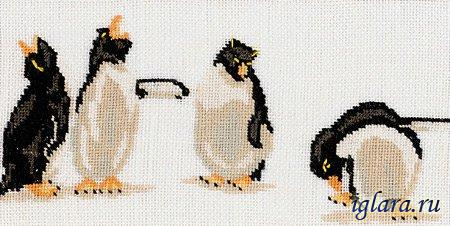 35113/Квартет Пингвинов (Quartet of Penguins)