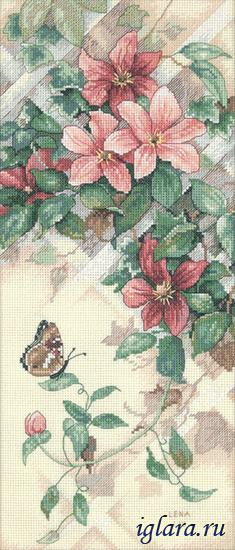 13686/Бабочка и клематисы (Butterfly and Clematis)