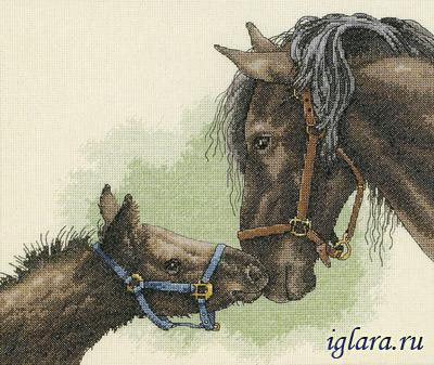 13722/Мать и дитя (Mother and Colt)