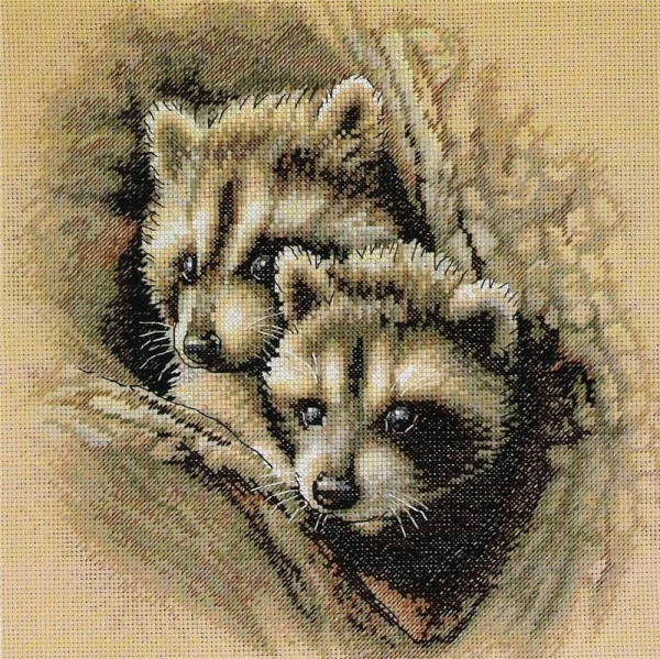 35253/��� ������ ����� (Two Racoon Cubs)